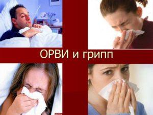 gripporvi
