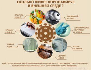 Сколько живет коронавирус в внешней среде